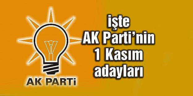 AK Parti 1 Kasım seçimlerindeki milletvekili adaylarını açıkladı