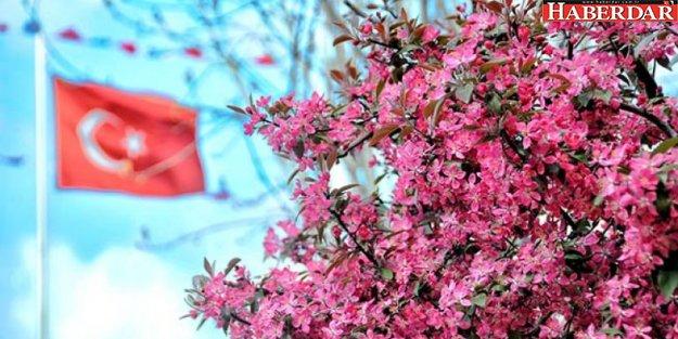 Bahar havası pazar gününe kadar devam edecek