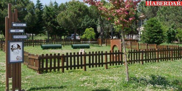 Büyükçekmece Belediyesinden 'Can Dostlar Parkı'
