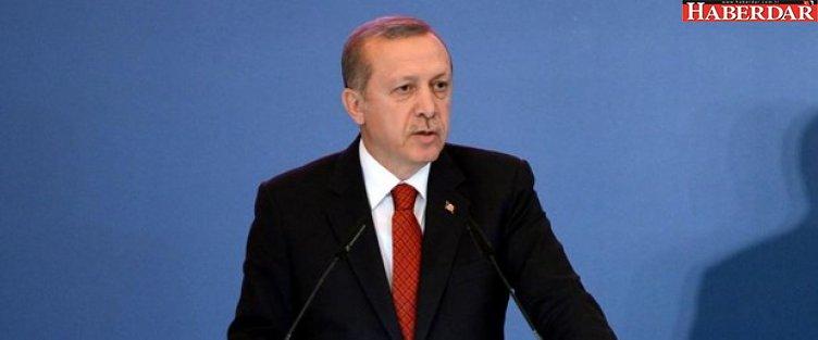 """Erdoğan'dan 'Türk Akımı"""" açıklaması"""