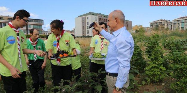 Hobi bahçeleri Büyükçekmeceli engellilere terapi oldu