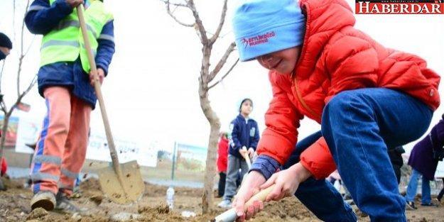 Hobi bahçeleri gönüllülerine kavuşuyor