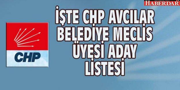 İŞTE CHP AVCILAR BELEDİYE MECLİS ÜYESİ ADAY LİSTESİ