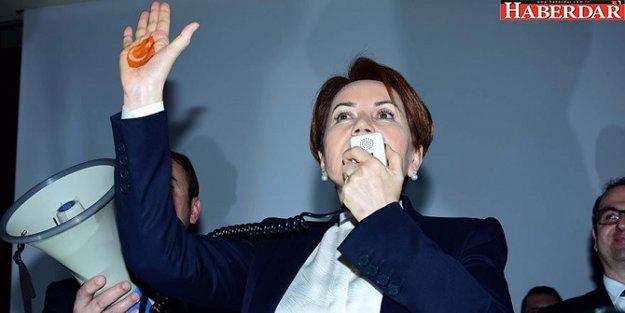 İşte Meral Akşener'in partisinin yeni logosu