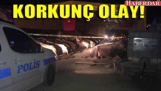 Kurban pazarında dehşet: 3 ölü