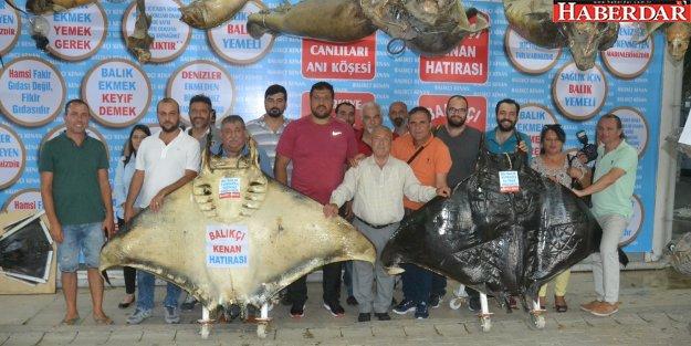 Recep Kara , Balıkçı Kenan'ı Kırkpınar'a davet etti
