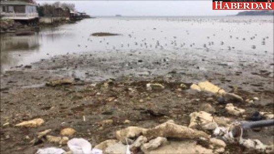 Silivri'de Deniz Suyu Çekildi