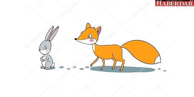 Tavşan adaylara dikkat