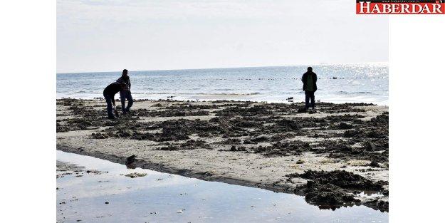 Tekirdağ'da korkutan görüntü: Deniz 15 metre çekildi