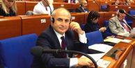 Akgün, Avrupa Konseyinde ülkemizi temsil ediyor