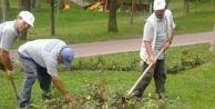 Avcılar#039;da park ve bahçe çalışmaları