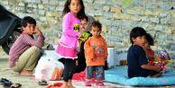 Bodrum'daki göçmenler gönderiliyor