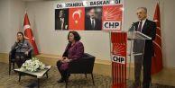 CHP İstanbul'da kadına yönelik şiddet tartışıldı