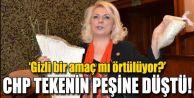CHP TEKENİN PEŞİNE DÜŞTÜ!
