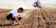 Çiftçilere 640 milyon TLlik destek yarın ödeniyor