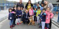 Çocuklar, Hayvanları Koruma Gününde sahipsiz hayvanları unutmadı
