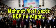 HDP ne yapar!