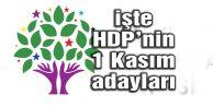 HDP'nin 1 Kasım seçimlerindeki milletvekili adayları açıklandı
