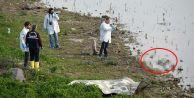 İstanbul#039;da balıkçıların oltasına çocuk cesedi takıldı!
