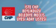 İŞTE CHP BEYLİKDÜZÜ BELEDİYE MECLİS ÜYESİ ADAY LİSTESİ