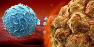 Kanser tedavisinde yeni yöntem: İmmünoterapi