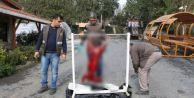 Karaca katiller yakalandı