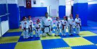 Miniklerin karate heyecanı
