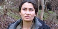 PKK#039;dan silah bırakma şartları