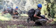 PKK'ya operasyon başlatıldı