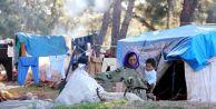 Sahillerdeki Suriyeliler Kamplara Gönderilecek
