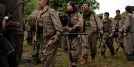 7 PKK#039;lı Daha Teslim Oldu