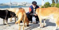Tatil için geldi, sokak hayvanları için bir daha dönmedi