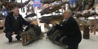 Ünlü cerrahtan Türkiye Deniz Canlıları Müzesi için önemli çağrı