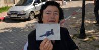 Yunan Anne 38 Yıldır Kayıp Olan Oğlunu Türkiye#039;de Arıyor