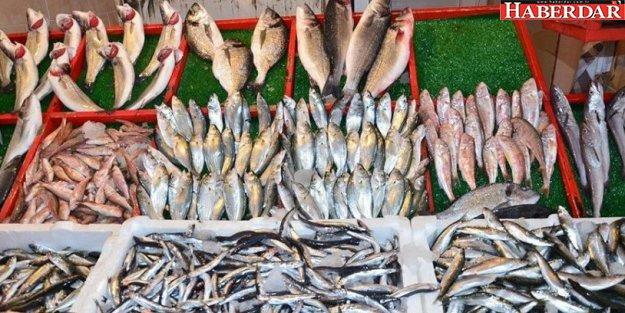 Türk balığında cıva ve kadmiyum tespit edildi