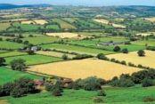 Çatalca'daki Arazi Satışlarına Onay