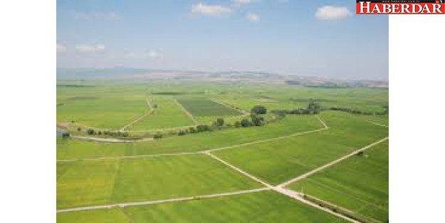 Yatırımcının Yeni Rotası Arsa ve Arazi'
