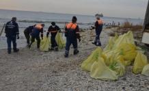 Avcılar sahilinden dev denizanaları toplanıyor;  10 ton denizanası toplandı