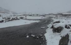 Rize beyaza büründü: Kar kalınlığı 20 santimetreye ulaştı