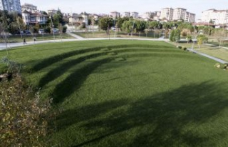 Park içerisine çim amfi