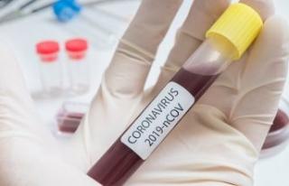 Haaretz: İsrail'de koronavirüs karşıtı aşı...