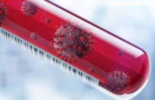 Koronavirüsün hangi ısıda hayatta kaldığı belirlendi