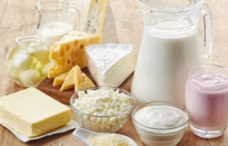 Süt ürünleri zamda rekora koşuyor