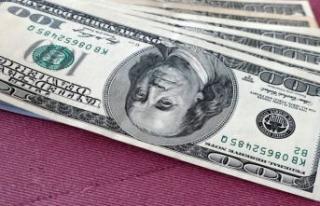 Berat Albayrak'ın istifasının ardından dolar...
