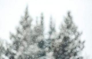 Meteoroloji'den uyarı geldi: Kar yağışı...