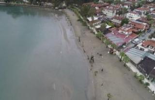 Doç. Dr. Önsoy değerlendirdi: Akyaka'da deniz...