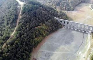 İstanbul'daki barajların son durumu... Yağışlar...