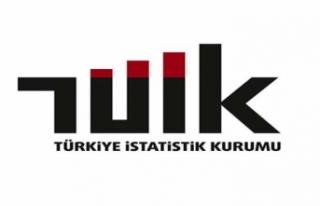 TÜİK'den işsizlik istatistiklerinin hesaplanmasında...