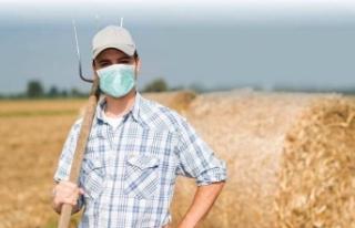 TÜİK: Tarımsal girdi fiyat endeksi yıllık yüzde...