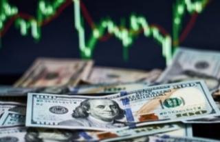 Yabancı ekonomistler Dolar/TL kurunu yorumladı:...